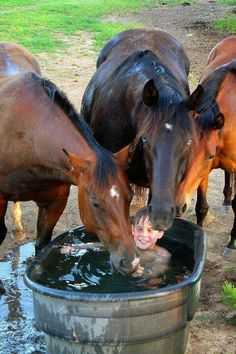 Rustic horse pic, funny as heck kid in the water trough with the horses getting a drink and checking him out.