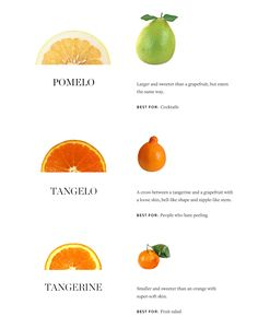 Citrus explained