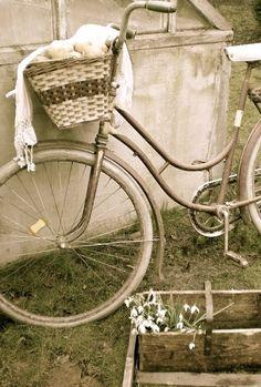 Sou eu que te faço companhia por aí, Entre ruas, avenidas, na beira do mar. Eu vou com você comprar e te ajudo a curtir Picolés, chicletes, figurinhas e gibis. Rodo a roda e o tempo roda e é hora de voltar, Pra isso acontecer basta você me pedalar.