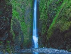 Oneonta Gorge, Oneonta Falls hike