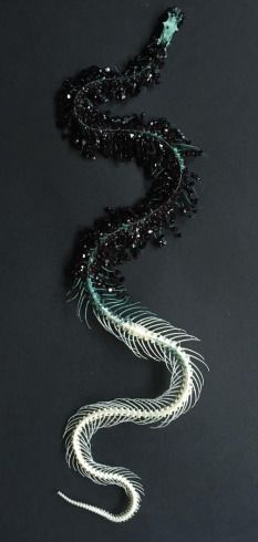 Crystallized snake skeleton
