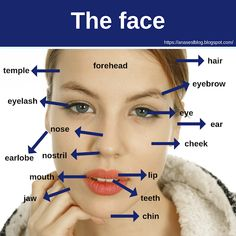 Vocabulary related to the face for EFL students. Vocabulary related to the face for EFL students. English Verbs, Learn English Grammar, English Writing Skills, English Phrases, Learn English Words, English Learning Spoken, Learning English For Kids, English Lessons For Kids, English Language Learning