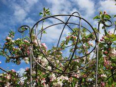 Hallontrollets design: Krukstöd, buskstöd, pionstöd, klematistorn och blommor