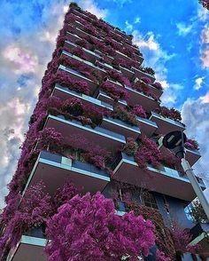 Bosco Verticale by Boeri Studio. (2014) Location: #Milan #Italy Photo by: @sassychris1  #architectdesigne