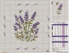 ЛАВАНДА. Схемы вышивки крестом (16) (700x540, 395Kb)