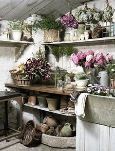 potting shed..& it looks French   Country!!!                              …                                                                                                                                                                                 More
