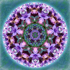 Floral Heaven Flower Mandala digital by SacredCircleMandalas, $59.95