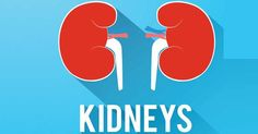 National Kidney Month: Taking Care of Your Kidney