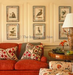 Bunny Williams. Detail of a collection of ornithological prints in beautiful frames displayed on the living room wall