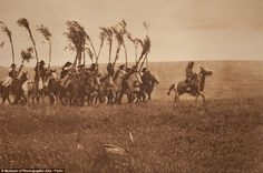 'Bringing the Sweat lodge Willows', 1900, shows Piegan men on horseback triumphantly riding towards an encampment brandishing willows