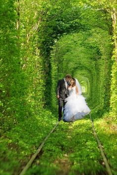 【愛のトンネル】緑の木々に包まれたロマンティックな世界。ウクライナのクレベンにある。                  Tunnel of Love in Kleven, Ukraine