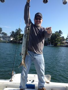 Nice barracuda caught light tackle fishing in the Fort Lauderdale Intracoastal waterway.  Let's go fishing! www.FishHeadquarters.com
