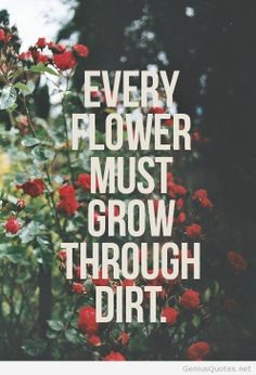 Every flower must grow through dirt!