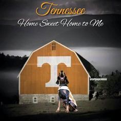 Tennessee: Home Sweet Home Tn Vols Football, Tennessee Volunteers Football, Tennessee Football, Tennessee Game, Football Crafts, Football Season, Tennessee Mascot, State Of Tennessee, University Of Tennessee