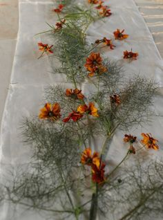coreopsis and wild fennel on silk   Obovate Designs™ Coreopsis Flower, Yellow Print, Diy Dress, How To Dye Fabric, Burgundy Color, Fennel, Soap Making, Harvest, Dandelion