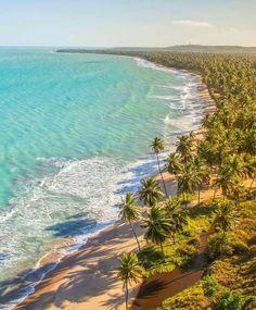 Japaratinga Beach in Alagoas Brazil (Paradise) l #PageVibe Salinas // Praia de Japaratinga em Alagoas nordeste do Brasil. by pagevibe