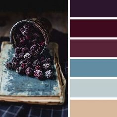 100 Color Inspiration Schemes : Teal and Blackberry Color Palette #color #colorpalette #colorscheme