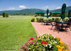 Day 3 of Virginia Wine Month features the majestic King Family Vineyards in Crozet. Drink it in, friends!  See all the pix here http://vawineinmypocket.com/article/virginia_wine_country_photo--day_virginia_wine_month
