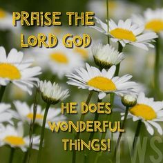 Praise the Lord God, the God of Israel, who alone does such wonderful things. ~Psalms 72:18