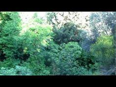 ΣΑΜΟΣ ΤΟ ΝΗΣΙ ΤΟΥ ΠΥΘΑΓΟΡΑ-Η ΚΥΡΑ ΤΩΝ ΑΜΠΕΛΙΩΝ 1: ΣΤΑΥΡΙΝΗΔΕΣ Samos, World, Outdoor, The World, Outdoors, Outdoor Games, The Great Outdoors, Peace
