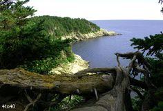 Cape Breton Island Top 5 Most Beautiful Islands in The World Cape Breton, Canada Travel, Nova Scotia, Beach Fun, Beautiful Islands, Continents, Night Life, North America, Most Beautiful