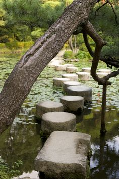 Heian Shrine Garden, Kyoto. I want a moat in my backyard and stones tall enough in it to make a path