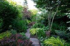 Garden writer Marjorie Harris shares with us her shade garden in Toronto, Canada, as well as a detailed list of plants that she uses in her ...