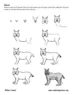 Pin By Javi Vicente On Lynx Designs Pinterest