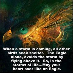 Living above the storm is the calmest, safest place to be.
