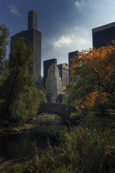 Autumn in New York - Photogrphy by Alexander http://Jikharevbit.ly/alexanderjikharev Central Park NYC. #