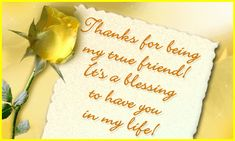 Thanks for being my true friend...It's a blessing to have you in my life! friendship quote rose yellow friend friendship quote friend quote true friend graphic