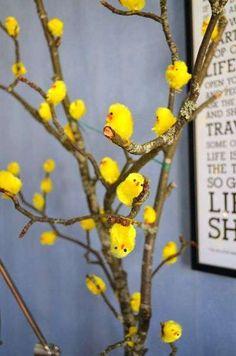 Alberi di Pasqua - Albero di pasqua con pulcini gialli