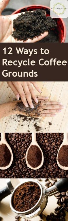 12 Ways to Recycle Coffee Grounds | Bless My Weeds