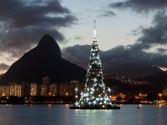 Upping the ante, the city of Rio de Janeiro each year sets their celebrations afloat—literally. The Lagoa stands some 280 feet in the air and has twice been included in the Guinness Book of Records since the event's inception in 1996 as the largest floating tree in the world.