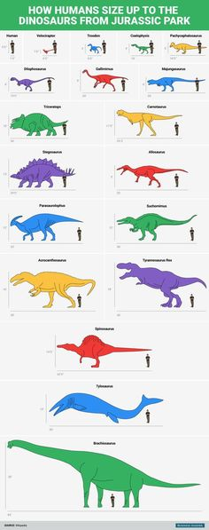 Tamaños Dinousarios Jurassic Park