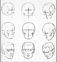 Head construction and shape