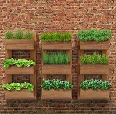 jardim-vertical-simples-e-barato