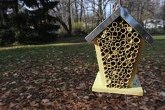Mason Bee House - encourage the little powerhouses of pollination to work in your garden.     $30.00