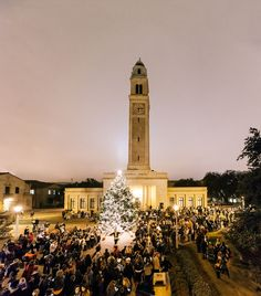 The lighting of the 2012 LSU Christmas tree. Noel Christmas, Christmas Lights, Louisiana Tourism, Louisiana State University, Lsu Tigers, Purple Gold, Pretty Pictures, Wonderful Time, Beautiful Places