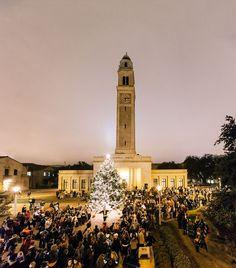 The lighting of the 2012 #LSU #Christmas tree.