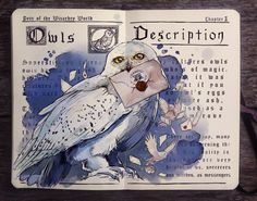 Owls page from HP History of Magic book with Fan Art (part of a beautiful series)