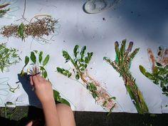 Land Art for Kids--LOVE! BioPark week..sumer camp. MUST.