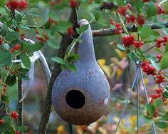 Birdhouse Gourd - 15 Seeds/Seed by Todds Seeds, http://www.amazon.com/dp/B000RO5QM6/ref=cm_sw_r_pi_dp_GRbDrb0KZW4CV