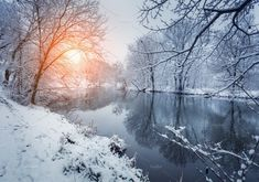 Winter forest on the river at sunset. Colorful landscape with snowy trees, frozen river with reflection in water. Winter trees, lake, sun and blue Snowy Trees, Winter Trees, Water Reflections, Winter Landscape, Countryside, Den, Around The Worlds, River, Stock Photos