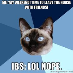(Made by me! Inspired by this weekend :-P) Chronic Illness Cat - Me: Yay weekend! Time to leave the house with friends! IBS: Lol nope.