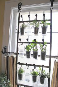 Love the idea of using hanging coat racks to create an indoor herb garden! This would be great on our sliding glass door!