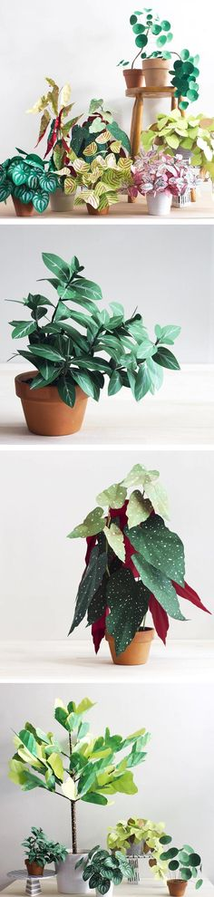 Corrie Beth Hogg paints on the texture of leaves on paper and then bundles them together like bushy, healthy plants. Best of all, these are DIY!