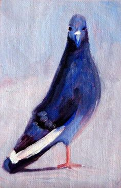 Pigeon Portrait Painting Small Bird Oil on by smallimpressions, $35.00