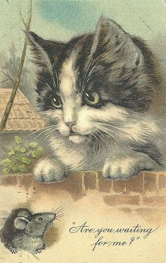 Vintage Cat & Mouse Card