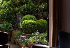 Garden Designer Non Morris